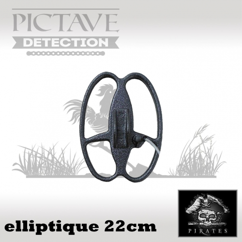 disque pirates ELLIPTIQUE 22 CM