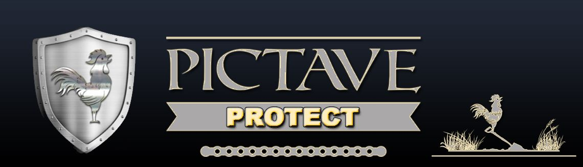 Pictave Protect programme